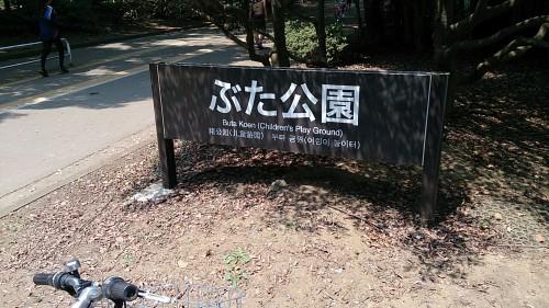 駒沢公園 ぶた公園